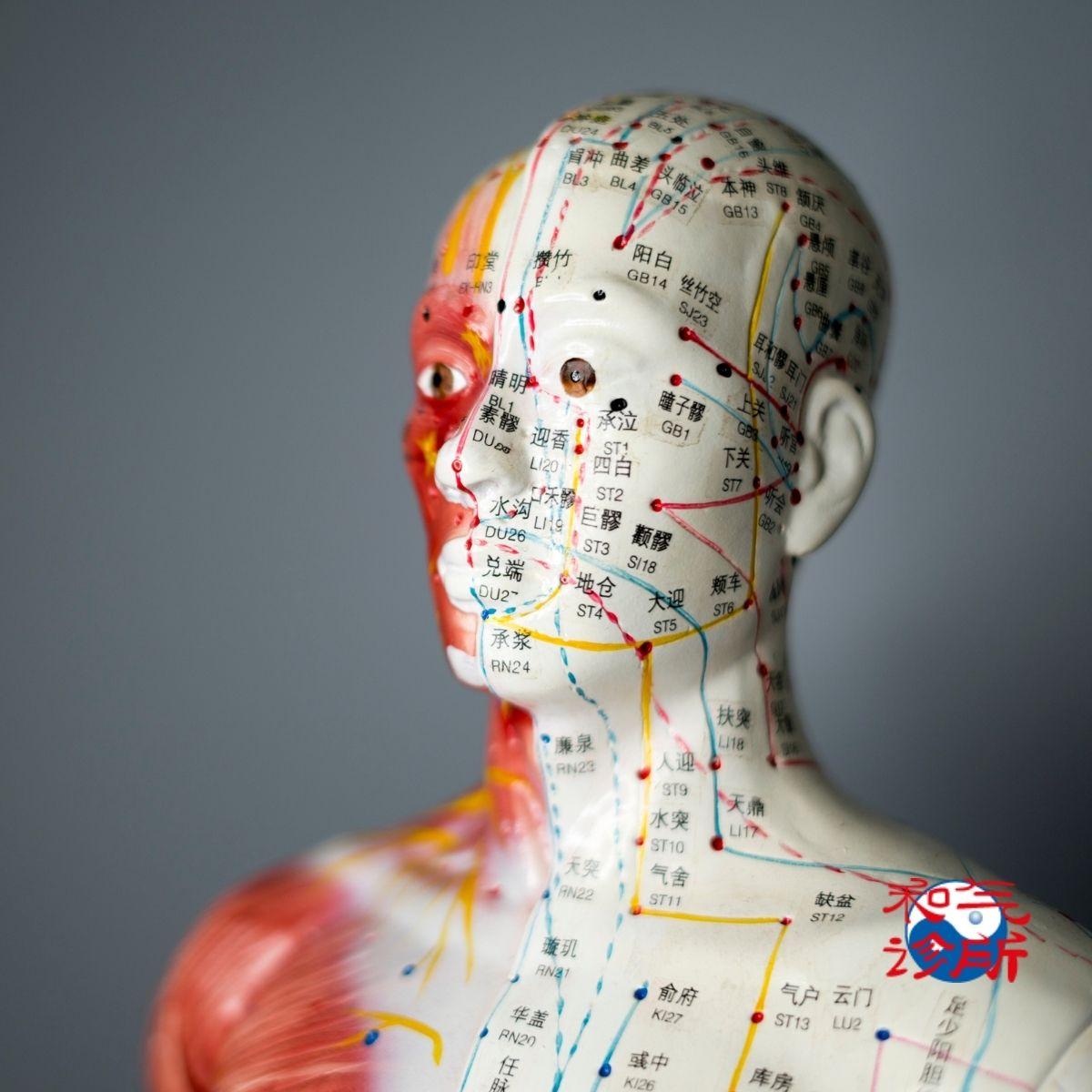 curso_acupuntura_espaço_ki